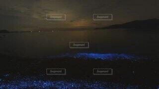自然,海,夜景,屋外,かわいい,綺麗,波打ち際,波,海岸,景色,オシャレ,癒し,キラキラ,神秘的,可愛い,ブルー,光る,お洒落,ヒーリング,海ほたる,夜の海,おしゃれ,海ホタル,夜光虫