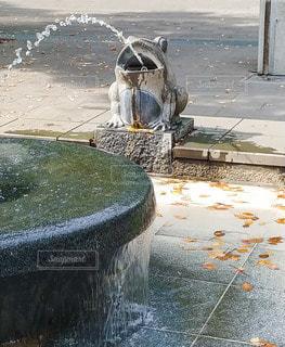 水,噴水,上野公園,カエル,蛙,滴,かえる
