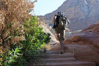 階段,岩場,後ろ姿,トレッキング,背中,冒険,ヨルダン,中東,ペトラ