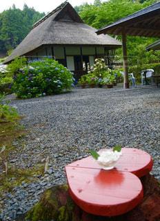 庭の小さな家のクローズアップの写真・画像素材[2271804]