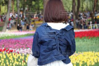 花畑の写真・画像素材[2375299]
