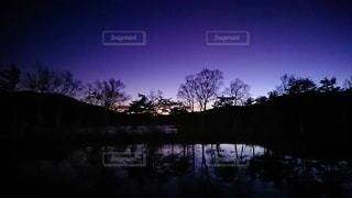暗闇の中に木がある池の写真・画像素材[3400987]