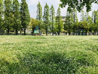 緑の中の公園の写真・画像素材[2135839]
