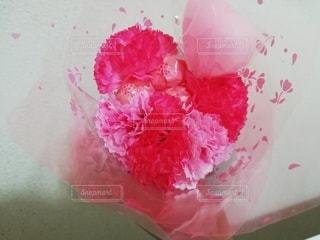 家族,花,ピンク,花びら,カーネーション,母の日