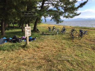 自転車の写真・画像素材[430305]