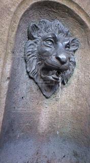 風景,動物,水,像,野外,ライオン,彫刻