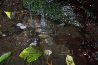 岩のクローズアップの写真・画像素材[2139368]