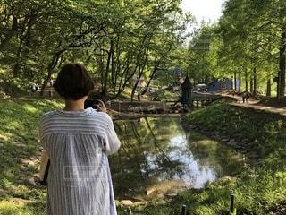 自然,風景,公園,森林,屋外,湖,後ろ姿,水面,草,樹木,人物,人,ムーミン,草木,トーベヤンソン,moomin,あけぼの森