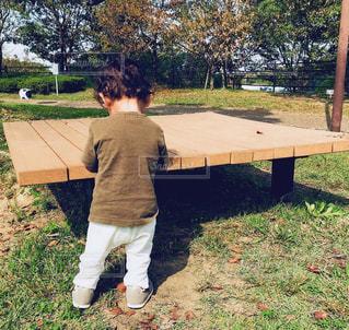 子ども,風景,公園,芝生,屋外,子供,草,樹木,人物,背中,人,後姿,赤ちゃん,幼児,少年,男の子,カラー,遊び場