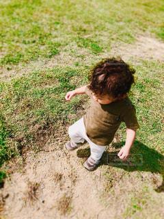 芝生が気に入った子の写真・画像素材[2261198]
