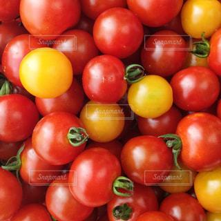 食べ物の写真・画像素材[519043]