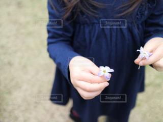 小さな花と小さな手。の写真・画像素材[899773]