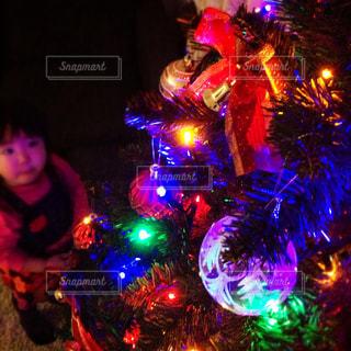 冬,カラフル,女の子,家,イルミネーション,ライトアップ,キラキラ,クリスマス,クリスマスツリー,LED,オーナメント