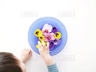 花とこどもの写真・画像素材[1197124]