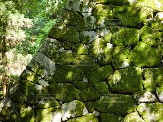 城跡の壁の写真・画像素材[2235396]