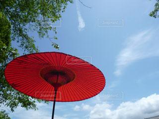 空,傘,赤,白,雲,青,大空