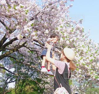 新宿御苑のお花見高い高いコーデはボーダー親子リンクコーデの写真・画像素材[1149687]