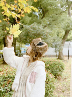 公園の大きなもみじの葉っぱを持って見上げる女性の写真・画像素材[1653614]