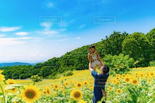 ヒマワリ畑と家族フォトの写真・画像素材[2377064]