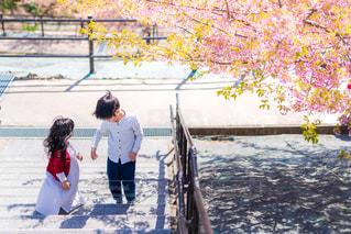 女性,男性,子ども,家族,2人,風景,公園,春,桜,屋外,ワンピース,階段,影,人,暖かい,シャツ,地面,いわき