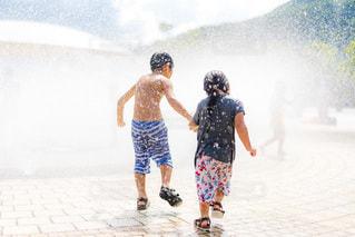 真夏の公園の写真・画像素材[3490754]