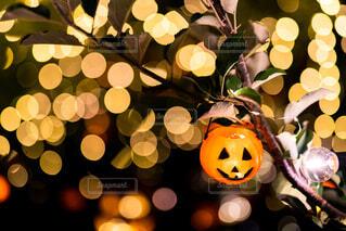笑うかぼちゃの写真・画像素材[3775313]