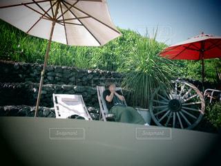 女性,空,傘,植物,パラソル,野外