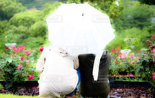 カラフルな傘を持っている人の写真・画像素材[2207867]