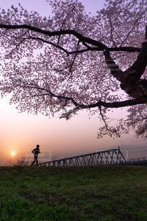 男性ジョギングシルエットの写真・画像素材[2156892]