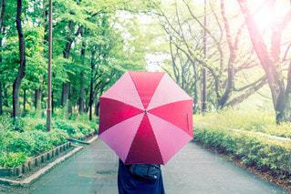 赤い傘を持っている女性の写真・画像素材[2186307]