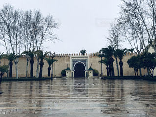 風景,空,木,雨,屋外,塀