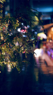 雨の都会の写真・画像素材[2172897]