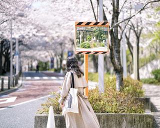 晴れて風が気持ちいい日の写真・画像素材[2260217]