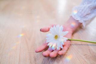 花を持つ手の写真・画像素材[2894840]