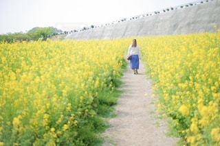 花畑,屋外,散歩,菜の花,ポートレート,レジャー,お散歩,ライフスタイル,おでかけ