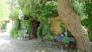 庭のベンチの写真・画像素材[2301580]