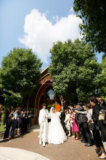 女性,男性,自然,風景,空,木,屋外,緑,雲,青空,結婚式,花嫁,女,男,ドレス,樹木,ハート,人物,植木鉢,人,花婿,新郎,新婦,チャペル,マーク,式,結婚式ドレス