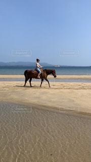 海岸で馬に乗りましたの写真・画像素材[2329903]