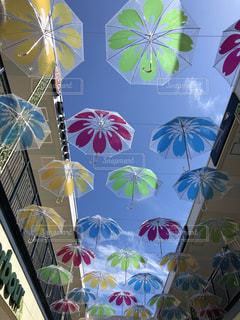 傘、傘、傘の写真・画像素材[2235516]