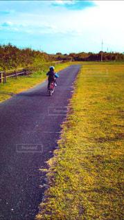 空,公園,自転車,屋外,後ろ姿,景色,草,男の子