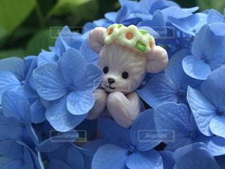 花の上に座っているぬいぐるみの群の写真・画像素材[3376095]
