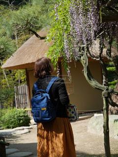 女性,自然,花,屋外,後ろ姿,藤,旅行,鑑賞,花のある暮らし