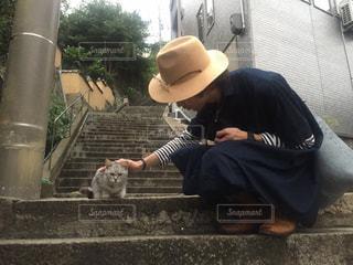 癒しの猫の写真・画像素材[2148667]