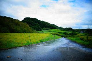 風景,空,雨,屋外,湖,水面,山,草,樹木,雨上がり,梅雨,天気,草木,雨の日,クラウド