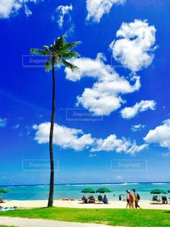 海の近くのビーチで数人の人々の写真・画像素材[2421517]