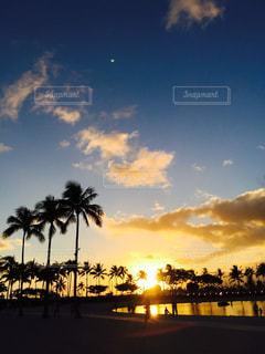 海,空,屋外,雲,夕焼け,波,海辺,ヤシの木,フィルム,フィルム写真,フィルムフォト