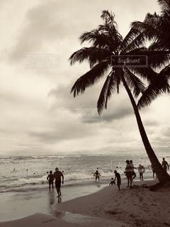 海,空,屋外,雲,波,海辺,ハワイ,フィルム,ワイキキ,フィルム写真,フィルムフォト