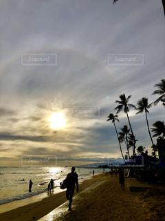 男性,自然,海,空,屋外,太陽,ビーチ,砂浜,水面,海岸,光,人物,ヤシの木