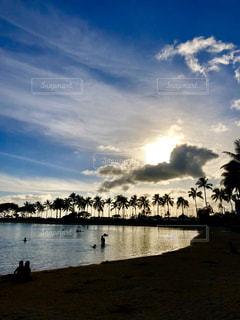 自然,風景,海,空,太陽,水面,海岸,光,ヤシの木,クジラのしっぽ雲