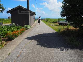 海,空,屋外,後ろ姿,道路,草,人物,背中,人,後姿